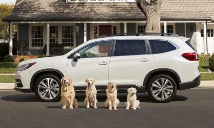 Subaru's National Make A Dog's Day