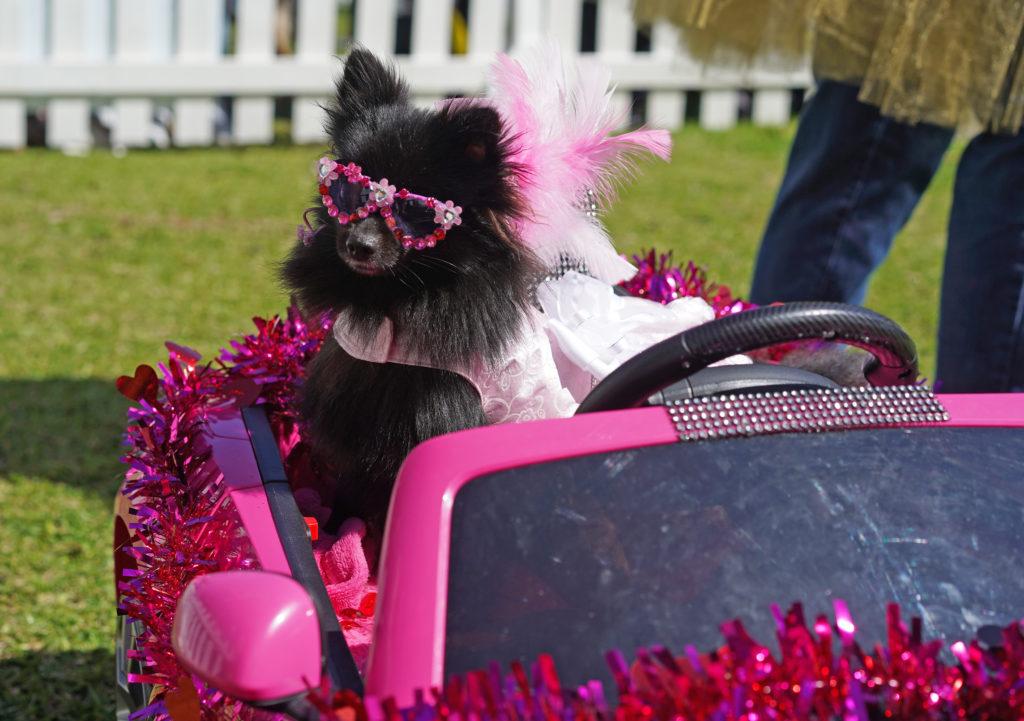 Barbie Pink Maserati